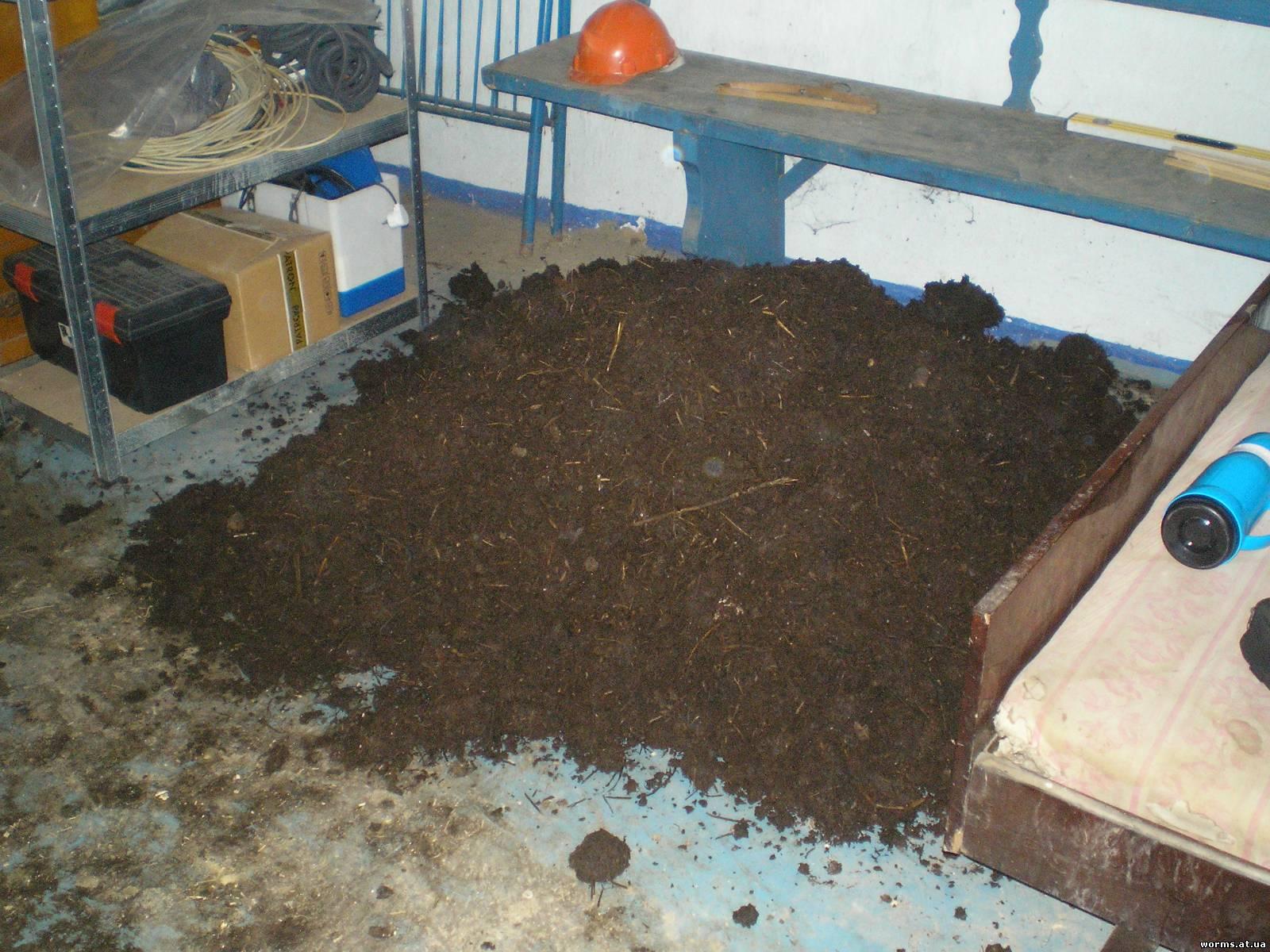 Ютуб выращивание дождевых червей 74